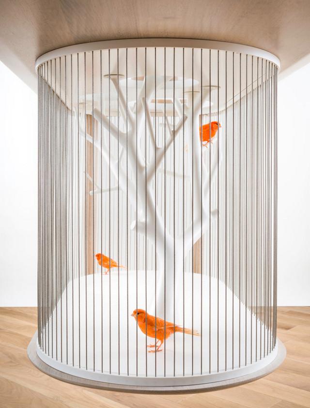 birdcage-table6