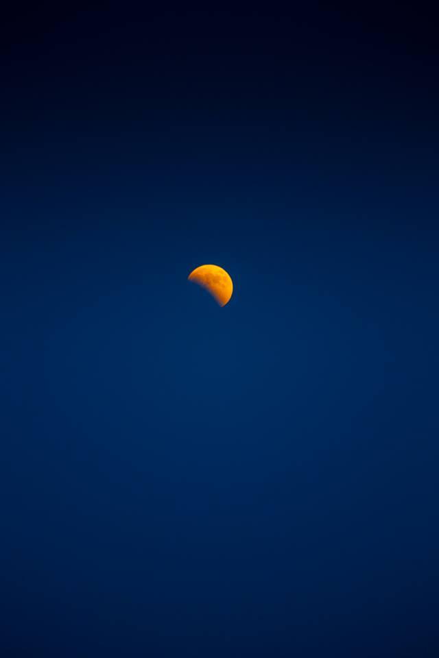 photo-tunis-la-nuit