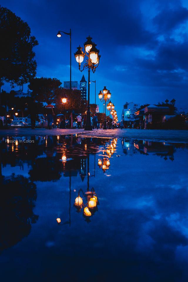 tunis-capitale-la-nuit-avenue-habib-bourguiba