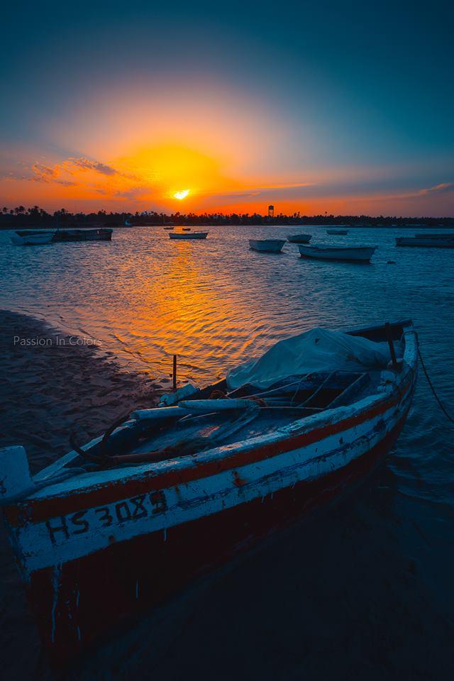 photo-tunisie-paysage-plage-djerba